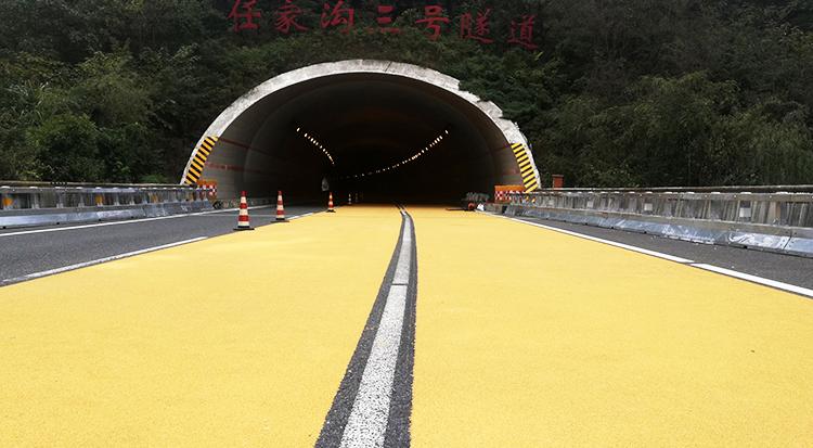 陕西省安康市十天高速